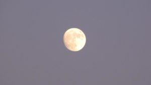 луна алтай